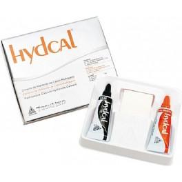 Cimento Forrador de Hidróxido de Cálcio Hydcal - Technew –